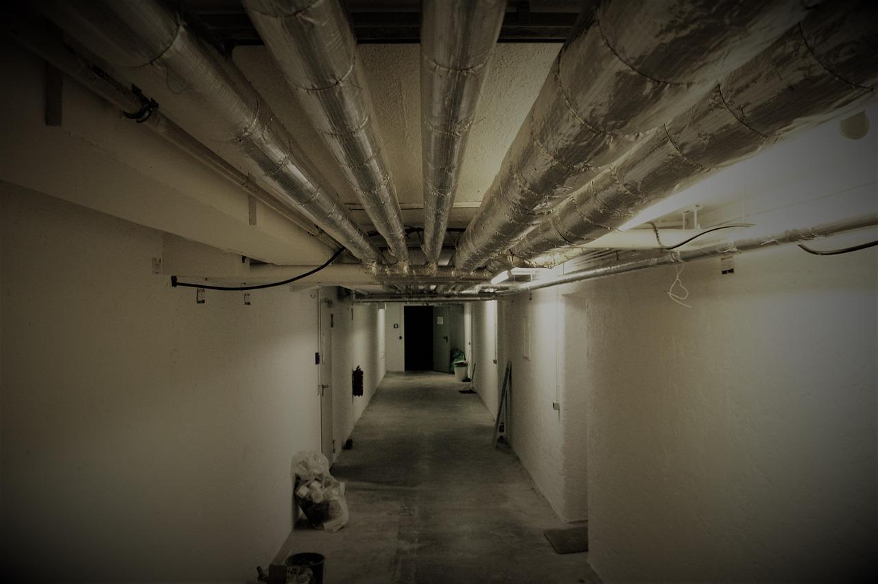 Co można zrobić w piwnicy? Praktyczne rady